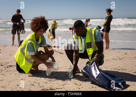Volunteers cleaning beach on a sunny day - Stock Photo