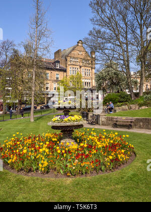 Spring flowers in Montpellier Gardens with Bettys behind in Harrogate Yorkshire England - Stock Photo