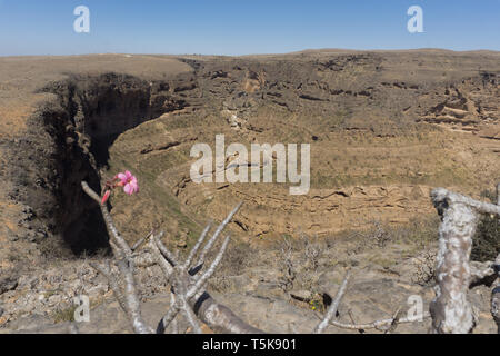 Teeq cave and Tawi Ateer Sinkhole, Dhorfar, Oman - Stock Photo