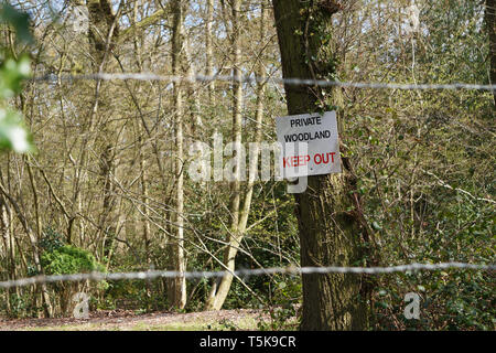 Woodland with private, keep out sign attached to a tree and barbed wire at the entrance - Stock Photo