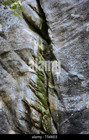 Cracked surface of an old rock with moss and lichen - Stock Photo
