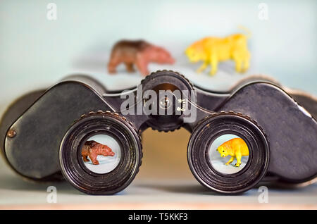 Binoculars Looking at Bear and Bull - Stock Photo