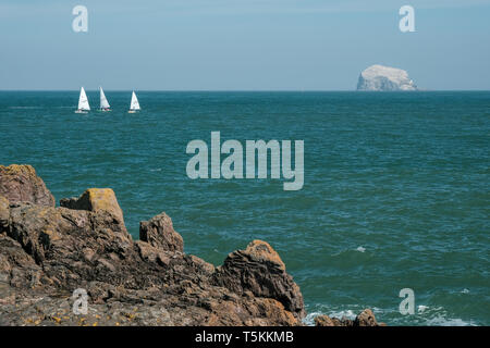 A view of Bass Rock with small sailing boats in the foreground, taken from the North Berwick coast on a sunny day, East Lothian, Scotland - Stock Photo