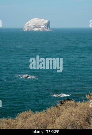 A view of Bass Rock taken from the North Berwick coast on a sunny day, East Lothian, Scotland - Stock Photo