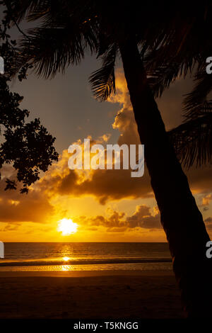 colorfull Sunrise over the coral sea at Cape Tributation in the Daintree region of far north Queensland with palms - Stock Photo