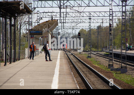 Swallow on the platform Pargolovo. Russian railway. Russia, St. Petersburg, May 8, 2018 - Stock Photo