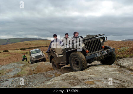 American WWII Willys Jeep and a Land Rover Defender 90 on a Dutch number plate off-road across the Long Mynd, Shropshire Hills, UK. American V British 4x4. - Stock Photo