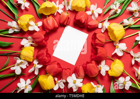 The composition of flowers. Frame of red tulips flowers in the shape of a circle, top view. Flat lay, top view, copy space - Stock Photo