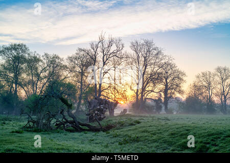 Oxfordshire countryside in the spring at sunrise. Shipton on cherwell, Oxfordshire, England - Stock Photo