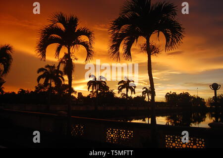 Sunset of fire over the lake and palm trees in the tropical island of Borneo in Kota Kinabalu, Malaysia. Clouds and spectacular colours fill the sky. - Stock Photo
