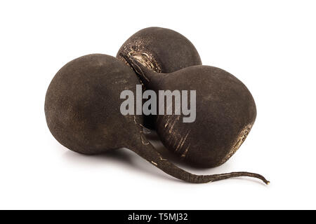 three black radish isolated on white background. - Stock Photo