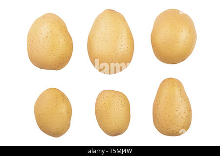 Young potato isolated on white background. Harvest new. Top view. Flat lay . - Stock Photo