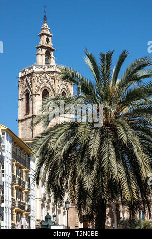 Valencia Cathedral Plaza de la Reina Square, Cathedral Tower, Palm tree Valencia Spain - Stock Photo