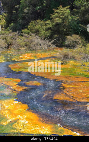 Waimangu Volcanic Rift Valley is a hydrothermal system, New Zealand. - Stock Photo