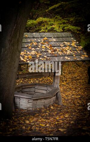 Wooden draw-well in autumn day with leaves on roof - Stock Photo
