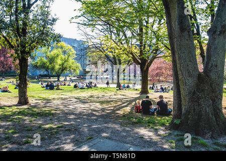 Volkspark am Weinbergsweg, People enjoy the sunshine in public park in Mitte, Berlin - Stock Photo