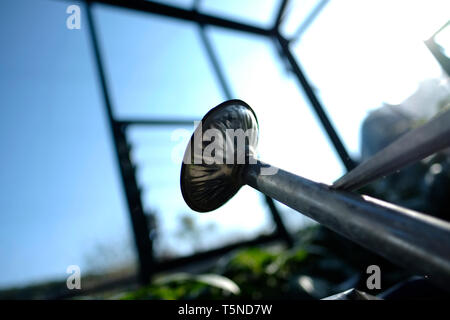 Views of a watering can in a greenhouse in a private English cottage country garden. - Stock Photo