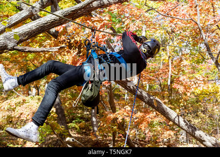 Russia, Vladivostok, 10/14/2018. Teenager boy climbs between trees with ropes and climbing equipment. Active sports and holidays. Climbing training, h - Stock Photo