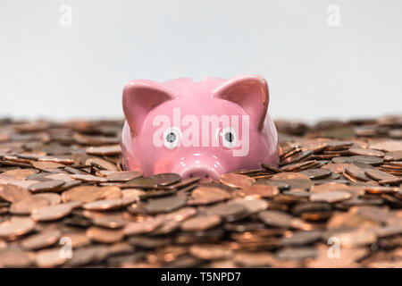Pink piggy bank swimming in copper pennies. - Stock Photo