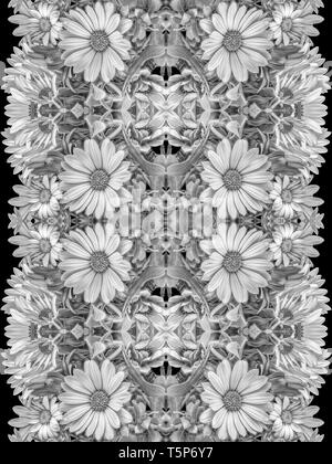 Fine art still life bright monochrome pattern made from macros of  white african/cape daisy/marguerite blossoms in graphical vintage painting style - Stock Photo