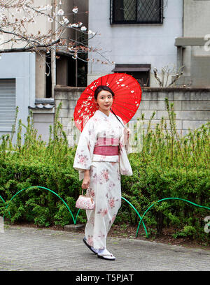 Beautiful Japanese woman in white kimono with red sash and red umbrella in a park next to a cherry blossom tree - Stock Photo