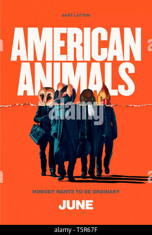 AMERICAN ANIMALS 2018 de Bart Layton teaser americain Prod DB © Film4 - New Amsterdam Film Company - RAW / DR - Stock Photo