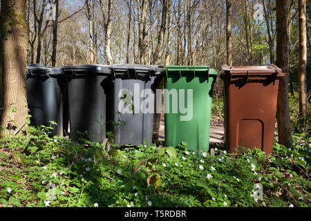 Garbage and recycling bins lined up on driveway in natural woodland setting, Ashdown Forest near Danehill, near Haywards Heath, Sussex, England, UK - Stock Photo