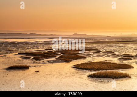 After a very cold night in the South West of England, dawn brings a clourful sunrise over the mudflats at Northam Burrows near Appledore in North Devo - Stock Photo