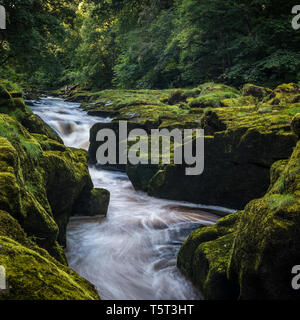 The Strid is a narrow section of the River Wharfe near Bolton Abbey in Yorkshire. It is named as it is considered to be only a single stride across. - Stock Photo