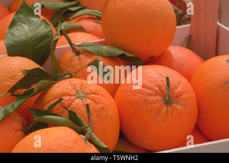 oranges on market with green leaves, juicy oranges organically grown lie in wooden boxes on market - Stock Photo