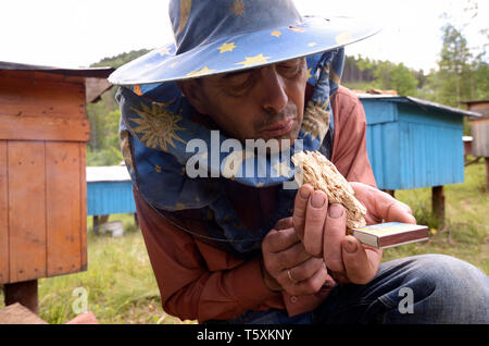 Apiary in the Carpathians. Beekeeper fanning the piece of wood for the smoker for fumigating bees.July 18, 2018. Lugi village, Ukraine - Stock Photo