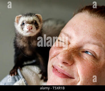 Young attractive red head girl with freckles smiling at little ferret pet on her shoulder