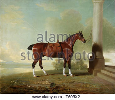 Benjamin Marshall, English, 1768-1835-Favorite Chestnut Hunter of Lady Frances Stephens [née Lady Frances Pierrepont] - Stock Photo