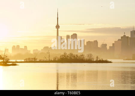 Toronto waterfront skyline in foggy sunset with cormorant bird colony in Tommy Thompson Park in the middle. - Stock Photo