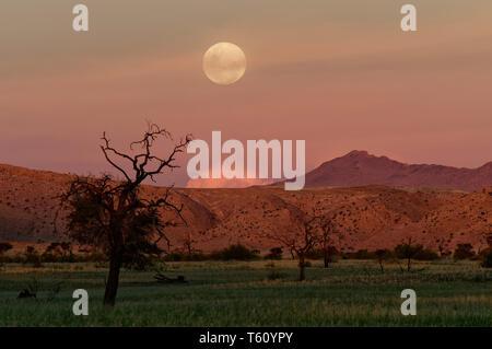 Moon over Namib Desert in Tsondab Valley Scenic Reserve District Windhoek Namibia - Stock Photo