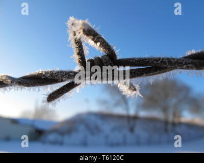 a frost-covered barbed wire fence in front of a blue sky - Stock Photo