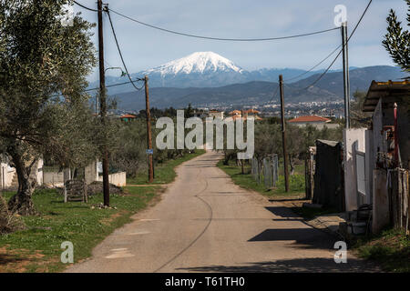 Near Avlida village,a  country road winds its way through farmland in the direction of Mount Olympus whose snow-capped peak shows over the horizon. - Stock Photo