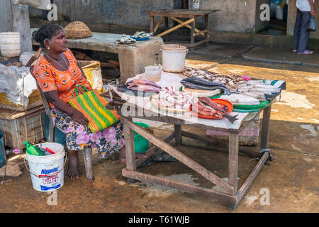 Seeking shelter from the heat of the day, a woman sits behind her display of fresh fish at Negombo Fish Market in Sri Lanka. - Stock Photo