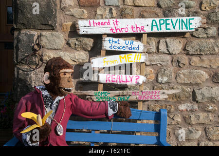 """Wray, Lancaster, UK. 28th April, 2019. No Monkey Business at the Scarecrow Festival with creatures, characters, caricatures, figures, animals, using plastics, bottles, containers,  wrapping and containers. The 2019 theme, chosen by the local school, is to highlight the themes of """"Evolution: Extinct, Endangered, Existing"""" This fun festive community event the annual Wray Scarecrow Festival in Lancashire is now in its 26th year and draws thousands of visitors to the rural village for the April celebration. Credit: MediaWorldImages/Alamy Live News - Stock Photo"""