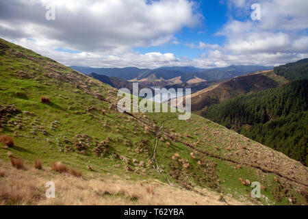 Looking north east towards Pepin Island from hills above Cable Bay, Nelson, New Zealand - Stock Photo