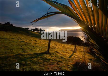 Sunrise on Pepin Island, Nelson, New Zealand - Stock Photo