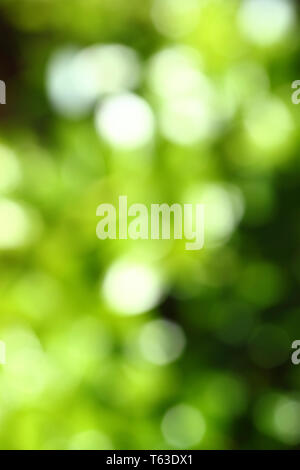 Abstract green blurred green background with bokeh - Stock Photo