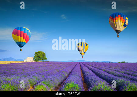 Amazing flowery summer landscape. Flying colorful hot air balloons over the purple fragrant lavender fields, Valensole, Provence, France, Europe. Trav - Stock Photo