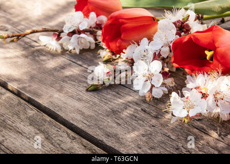 Frame White And Red Tulips Flowers Around Sheet Paper Black Background Stock