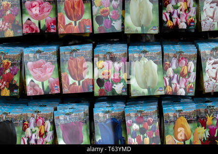 Selling Tulips At Amsterdam Flower Market The Netherlands 2019 - Stock Photo
