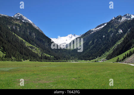 view over Finkau near Gerlos with mountains Reichenspitze and Gabler at Zillertal alps in springtime, Tyrol, Austria - Stock Photo