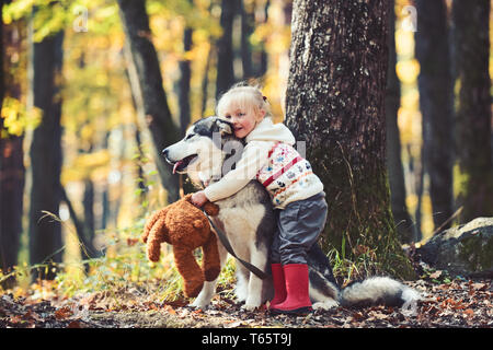 Little girl embracing husky dog in autumn park - Stock Photo