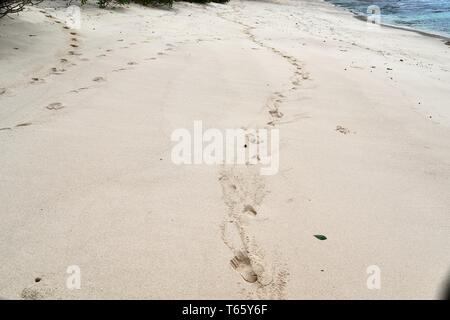 Beautiful shots of the white beaches on the Seychelles paradise island with footprints and water waves - Stock Photo