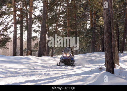 Snowmobile driving. Winter forest.  Walk on snowmobiles. Recreation concept on nature in winter holidays. Winter sports. - Stock Photo
