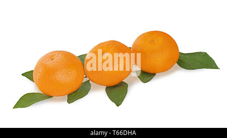 fresh tangerines with green leaves isolated on whi - Stock Photo
